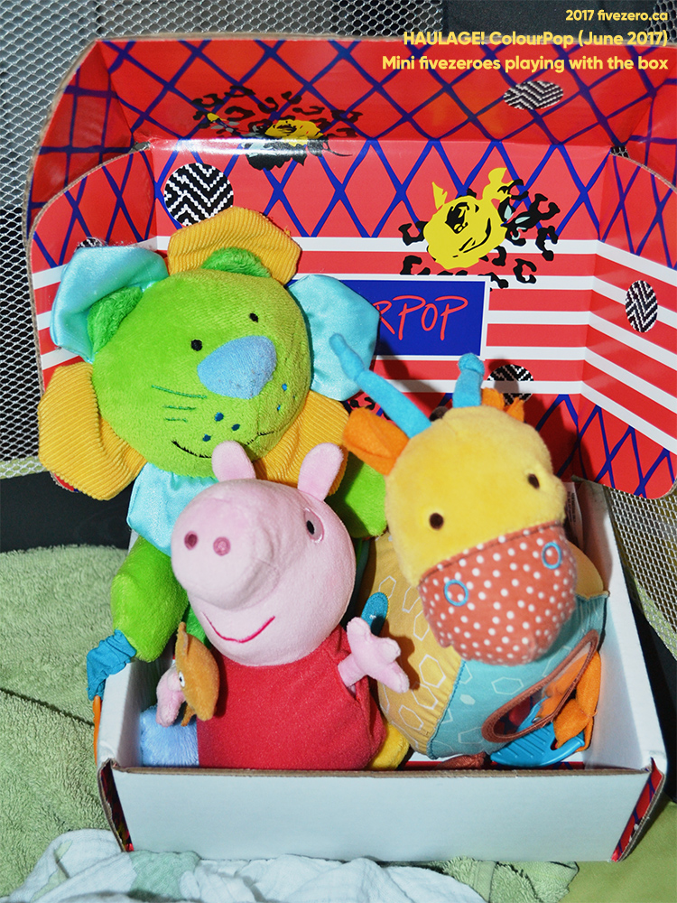 Olive's stuffed animals in a ColourPop box