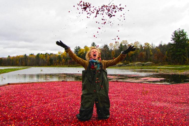 Cranberry toss