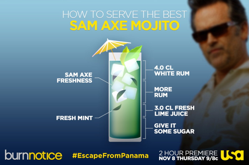 The Sam Axe Mojito (Burn Notice)
